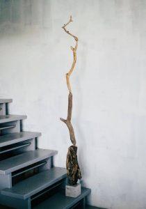 a totem pole (balancing act) of sorts -