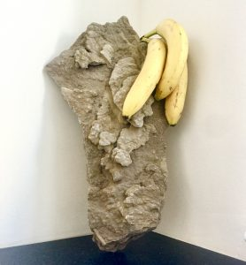 torso 4 - this is still around and being reconsidered, minus the bananas