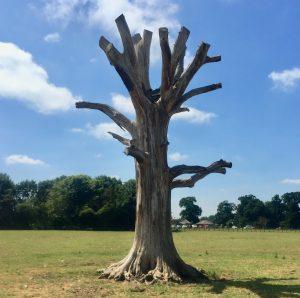 tree 1 -